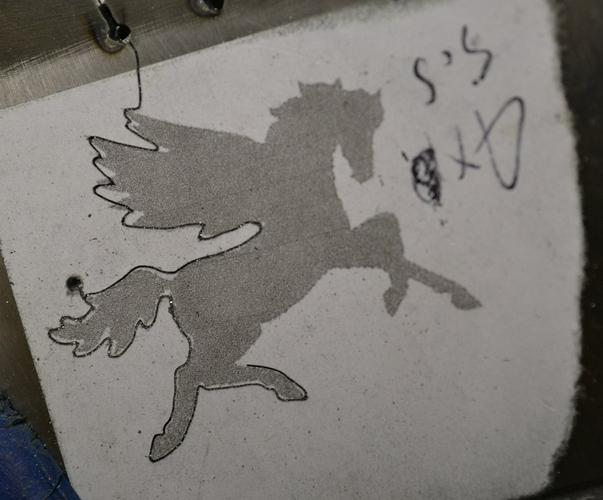 Pegasus half- sawed